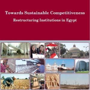 Ninth Report: Towards Sustainable Competitiveness, Restructuring Institutions in Egypt